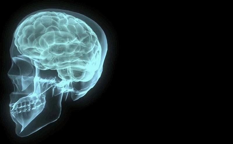 Pensamento e inteligência
