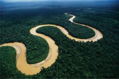 Devemos saudar a Amazônia
