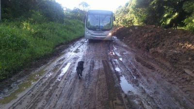 Moradores reclamam: Ruas do Guaraú estão em petição de miséria