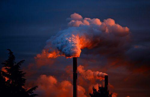MPF investiga licença ambiental de termoelétrica próxima a Estação Ecológica em SP
