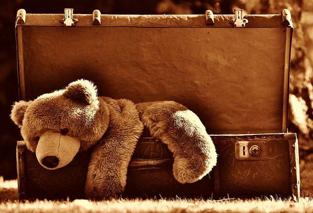 Ursinho dentro do baú
