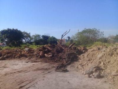 Prefeitura de Peruíbe sofre ação ambiental e diz que as denúncias não procedem