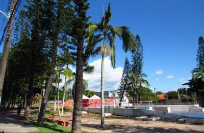 Prefeitura corta árvores com mais de 30 anos na Praça Flórida