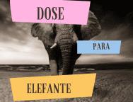 Capa do podcast Dose para elefante