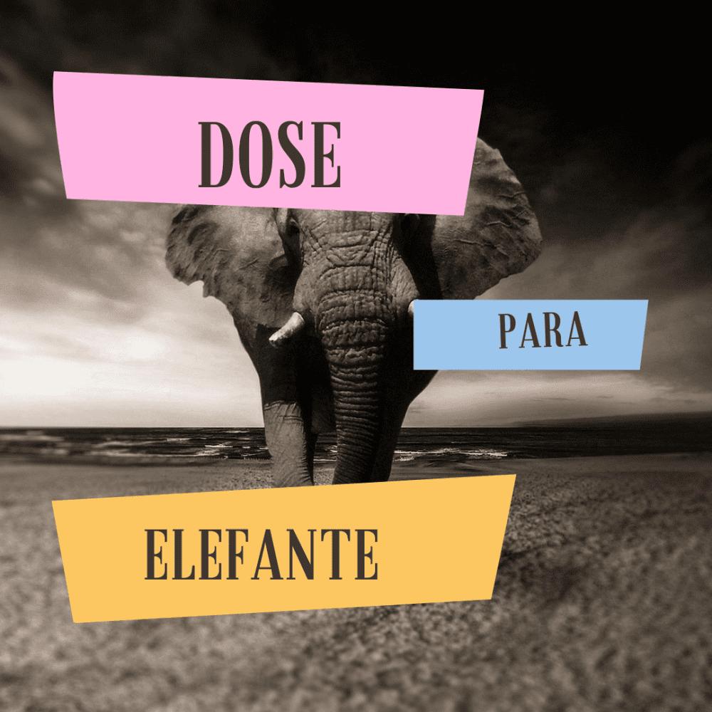Podcast Editoria Livre 17 – Dose para elefante
