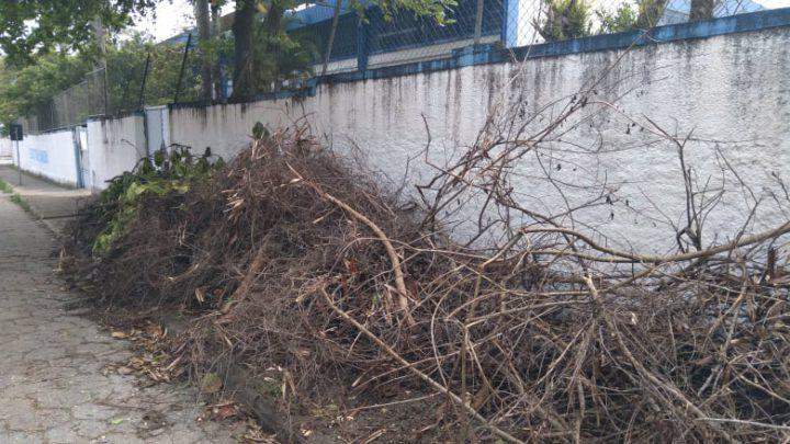 Escola estadual aguarda limpeza da calçada e a prefeitura promete fazer o serviço ainda nesta semana